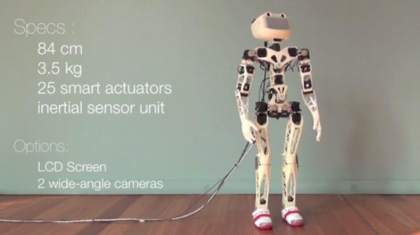 poppy-robot-3d