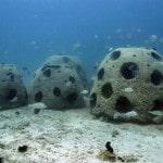 Sauver les récifs marins avec l'impression 3D : le projet du Reef Arabia